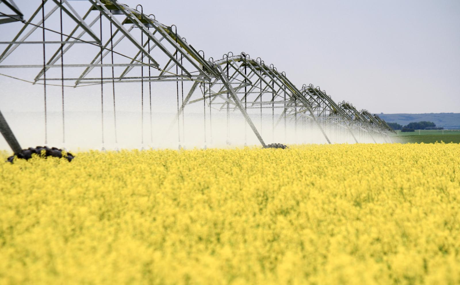 Irrigation in Saskatchewan